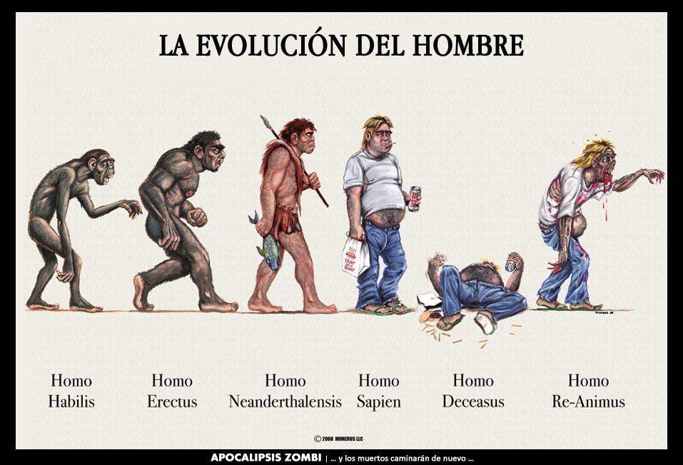 historia del hombre: